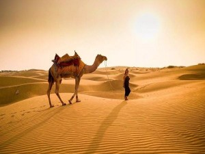 Irctc The Opportunity To Visit Jaisalmer For Just 6320 Rupees Will Enjoy The Desert Safari