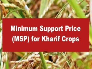 Big Good News For Farmers The Government Increased The Msp Of Kharif Crops